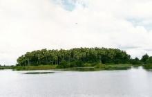 เผยความลับ!! เกาะคำชะโนด ทำไมเคยลอยน้ำได้ เป็นเพราะปาฏิหาริย์พญานาค!?