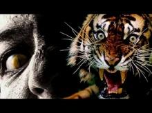 ตำนานผีเจ้าป่าเจ้าเขาและเสือสมิง