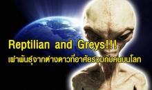 Reptilian and Greys!!! เผ่าพันธุ์จากต่างดาวที่อาศัยร่วมกับคนบนโลก